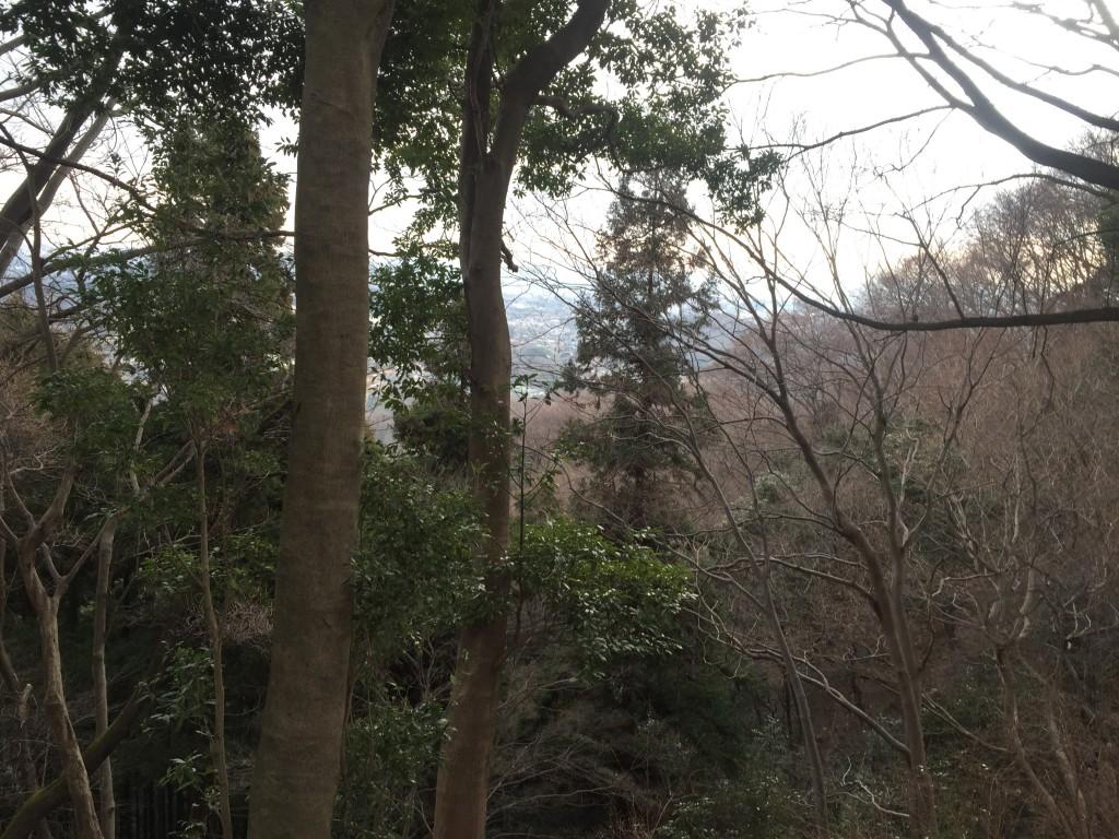 白山〜日向山(ひなたやま)