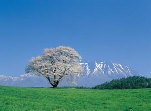 岩手県雫石町(しずくいし)