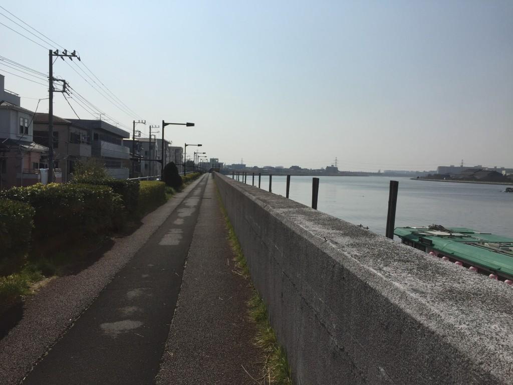 旧江戸川河口