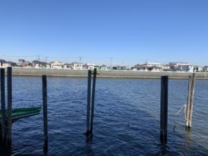 旧江戸川沿い 浦安