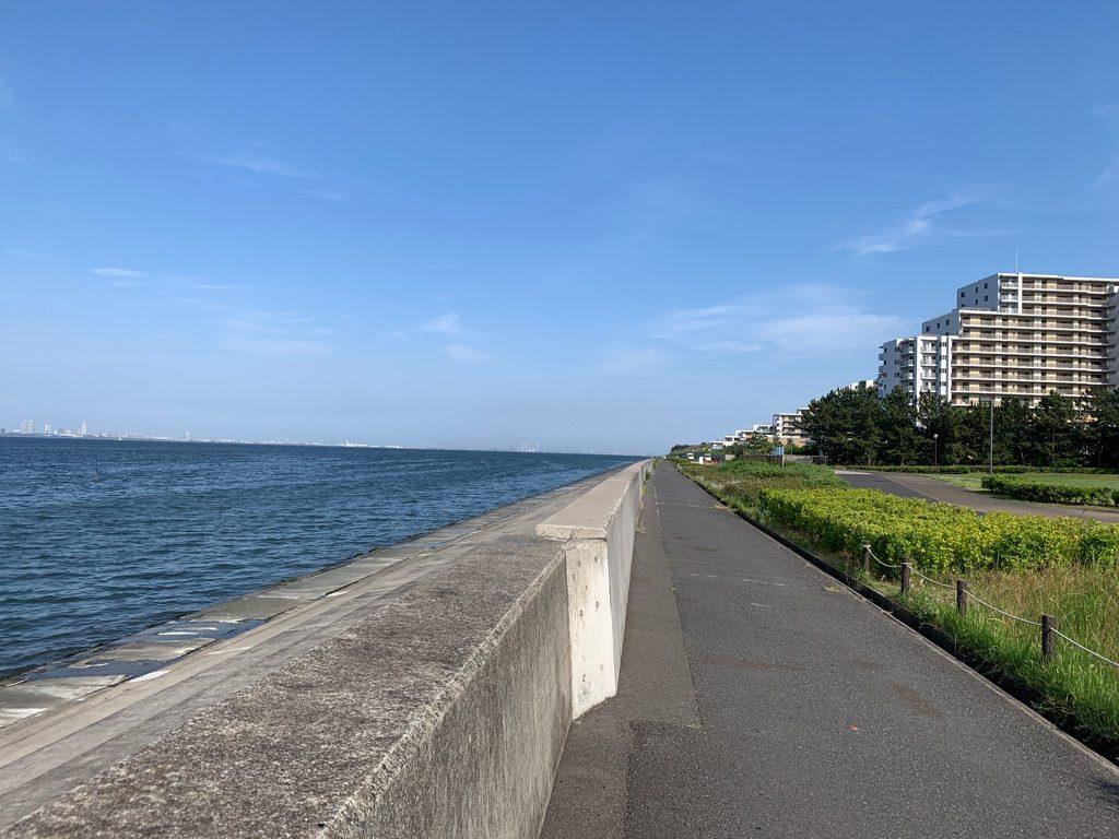 三番瀬沿い緑道