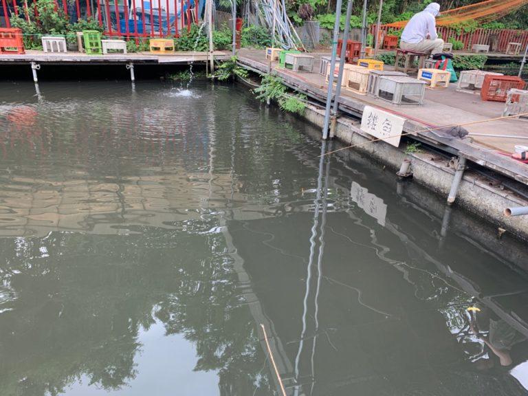 武蔵野園 釣り堀