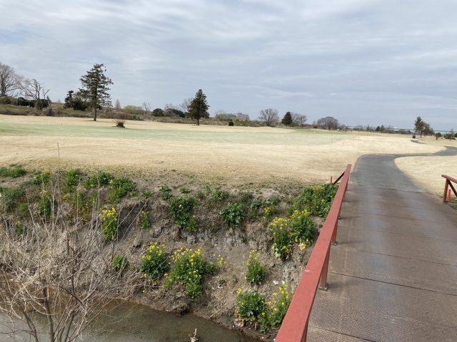 ノーザンカントリークラブ 錦ヶ原ゴルフ場 さくら草コース