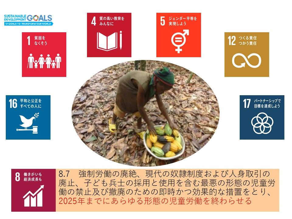 SDGsの多くの目標が関係