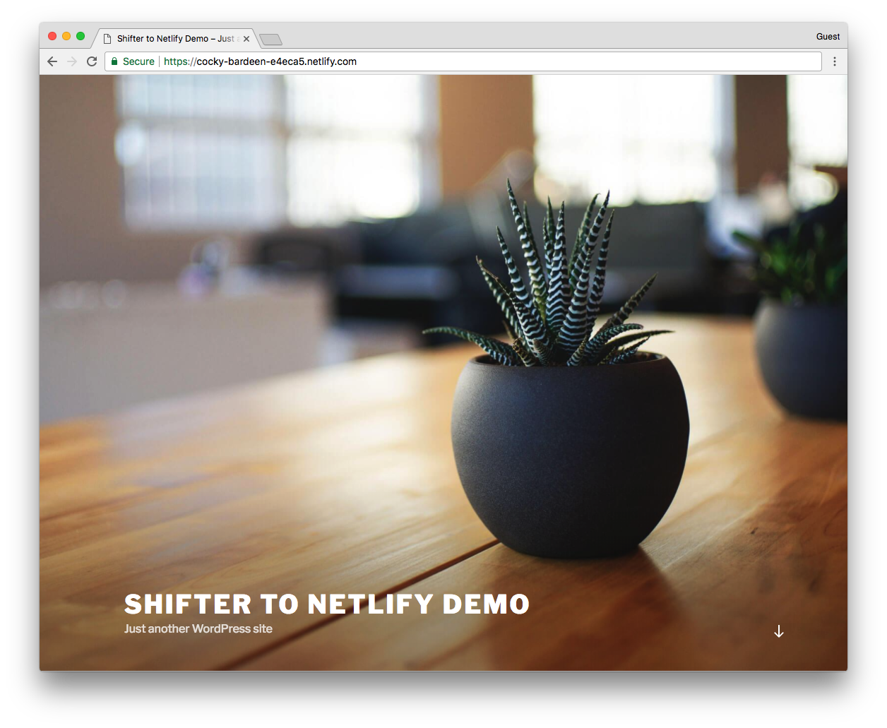 Shifter Netlify Demo